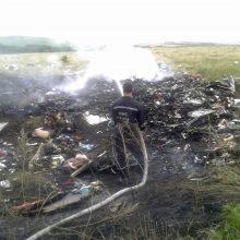 V. Putinas neigia Rusijos kaltę dėl MH17 katastrofos