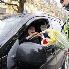Uostamiesčio moterims – tulpių žiedai