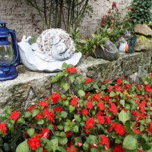 Daugiabučio namo kieme klaipėdietės įkurti gėlynai – visų žmonių džiaugsmui