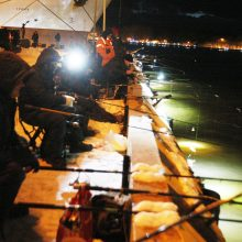 """Stintų žvejyba uostamiestyje – """"ant bangos"""""""
