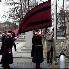 Lietuvos kariuomenės diena Kaune – žvarbi, bet su šypsenomis