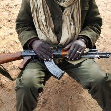 Mozambike džihadistai žiauriai nužudė mažiausiai 20 žmonių