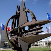 Spaudžiamos D. Trumpo, NATO šalys didina išlaidas gynybai
