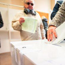 Seimas rinkimų kartelę linkęs mažinti, bet ne tiek, kiek nori valdantieji