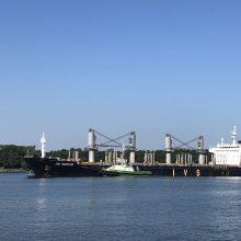 Uoste dar labiau griežtinama amonio nitrato trąšų kontrolė