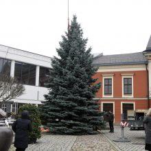 Pandemija keičia ilgametes tradicijas: Klaipėdos Kalėdų eglutės įžiebimas – virtualiai