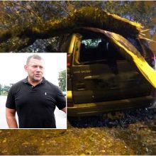 Klaipėdoje nuvirtęs medis sutraiškė kieme stovėjusį automobilį: kas atlygins žalą?
