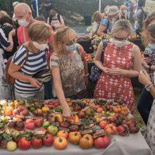 Patrauklumas: rugpjūtį III forte buvo surengta veislinių pomidorų paroda, į kurią susirinko pomidorų augintojai iš daugelio Lietuvos vietų.