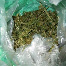 Klaipėdoje pareigūnams įkliuvo narkotikų turėjęs jaunuolis