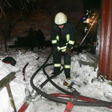Kaišiadorių rajone per valandą gaisruose žuvo du žmonės