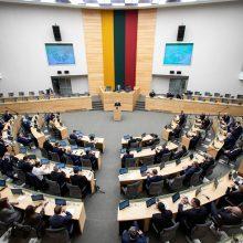 V. Čmilytė-Nielsen: Seimo nariai būtų apmokomi dirbti nuotoliniu būdu