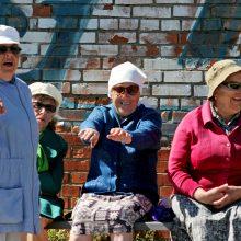 Vyriausybė spręs dėl išmokos vienišiems senjorams – nuo liepos mokėtų 28 eurus