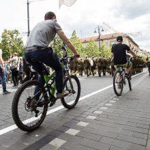 Prasideda Europos judumo savaitė: gyventojai skatinami automobilius palikti namie