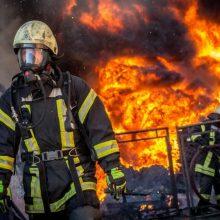 Priešgaisrinės apsaugos ir gelbėjimo departamentas mini 30-metį