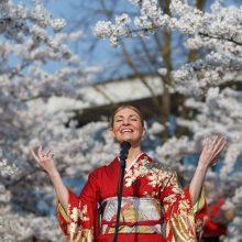 Tarp sakurų žiedų skambėjo japonų ir lietuvių liaudies dainos