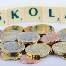 Skolų rekordininkas: pajūrio gyventojas neapmokėjo net 209 sąskaitų