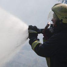 Per gaisrą sostinės daugiabutyje žuvo žmogus