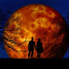 Dienos horoskopas 12 zodiako ženklų <span style=color:red;>(gegužės 24 d.)</span>