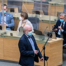 E. Gentvilas apie Partnerystės įstatymą: prasidės kova dėl dviejų projektų
