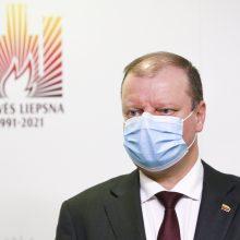 S. Skvernelis kritikuoja šešėlinę Vyriausybę: džiaugiuosi, kad manęs ten nėra