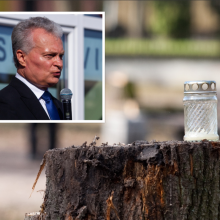 G. Nausėda apie kertamus miškus: nesuprantu, kas darosi Lietuvoje