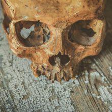 Kėdainiuose rasta žmogaus kaukolė, kaulai