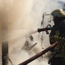 Šiaulių rajone užsiliepsnojus gyvulių fermai nugedė pastato stogas ir antras aukštas, žuvo ėriukai