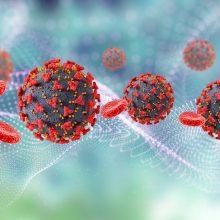Koronavirusas Lietuvoje: nustatyti 75 nauji atvejai, mirė keturi žmonės