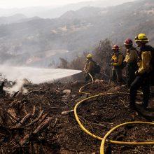 Kalifornijoje nurimus vėjui ugniagesiams lengviau kovoti su gamtiniu gaisru