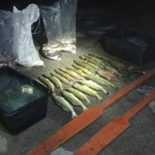 Sulaikyti Kretuono ežere brakonieriavę žvejai: teks atlyginti tūkstantinę žalą