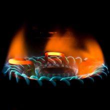 R. Pocius: bus bandoma sušvelninti dujų kainų augimą gyventojams