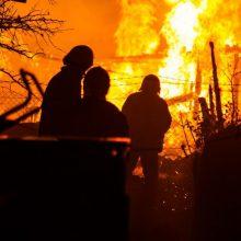 Anykščių rajone per gaisrą žuvo du žmonės