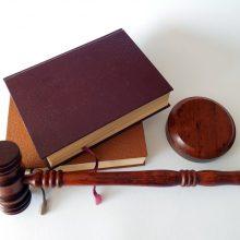 Bus teisiama prekių už daugiau kaip 3 tūkst. eurų pavogusi vilnietė