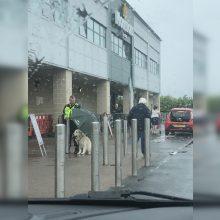 Poelgis tirpdo širdis: apsaugininkas šuniui atidavė skėtį, o pats stovėjo po lietumi