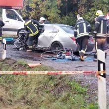 Klaipėdos rajone BMW rėžėsi į autokraną: sužeisti trys žmonės <span style=color:red;>(papildyta)</span>