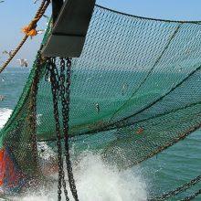 """Verslo """"išdaigos"""" kirto žvejams mėgėjams"""