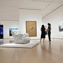 Niujorko modernaus meno muziejus atvėrė duris po beveik pusės metų pertraukos