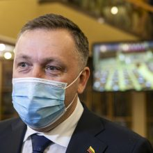 S. Šedbaras: A. Guogos grįžimas į verslą esant Seimo nariu – spjūvis į Konstituciją