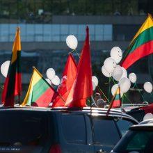 Protestuotojai prie Seimo – policijos akiratyje: gresia baudos
