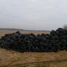 Klaipėdos rajone aptikta naudotų padangų krūva