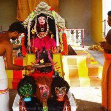 Indijoje atsirado deivės Koronos šventykla