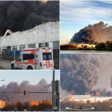 Ministrė: gaisro metu padaryta žala tik Alytaus miesto ir rajono savivaldybėms