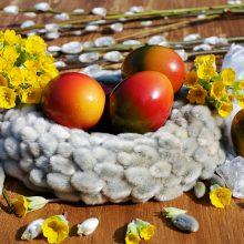 Ragina užsienyje dirbančius lietuvius negrįžti švęsti Velykų