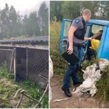 Širvintų siaubas: maišuose rasti negyvi šuniukai