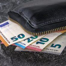 Euro įvedimas ir turėjo teigiamą ekonominį poveikį, ir augino kainas