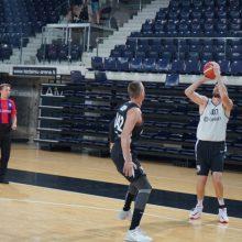 Turnyro rezultatyvumo rekordą pakartojęs D. Lavrinovičius – pergalės kalvis