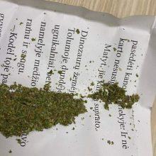 Kretingos rajono mokyklose radus narkotikų pėdsakų, žada patikrinimus su šunimis