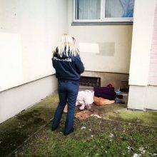 Šiurpus radinys Šilutės plente: prie namo aptiktas moters lavonas