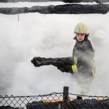 Kretingos rajono kaime ugniagesiai užgesino tris degusius pastatus