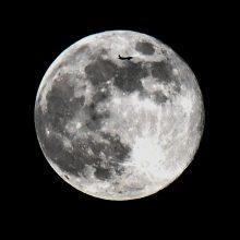 """Kinija planuoja """"maždaug per dešimtmetį"""" pastatyti stotį Mėnulyje"""